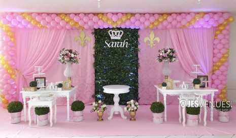 Princess  Theme Simple Balloons Decoration For Birthday Party Or Kids Party